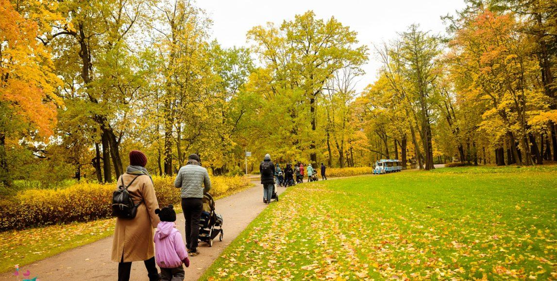 Мамаход по парку Александрия