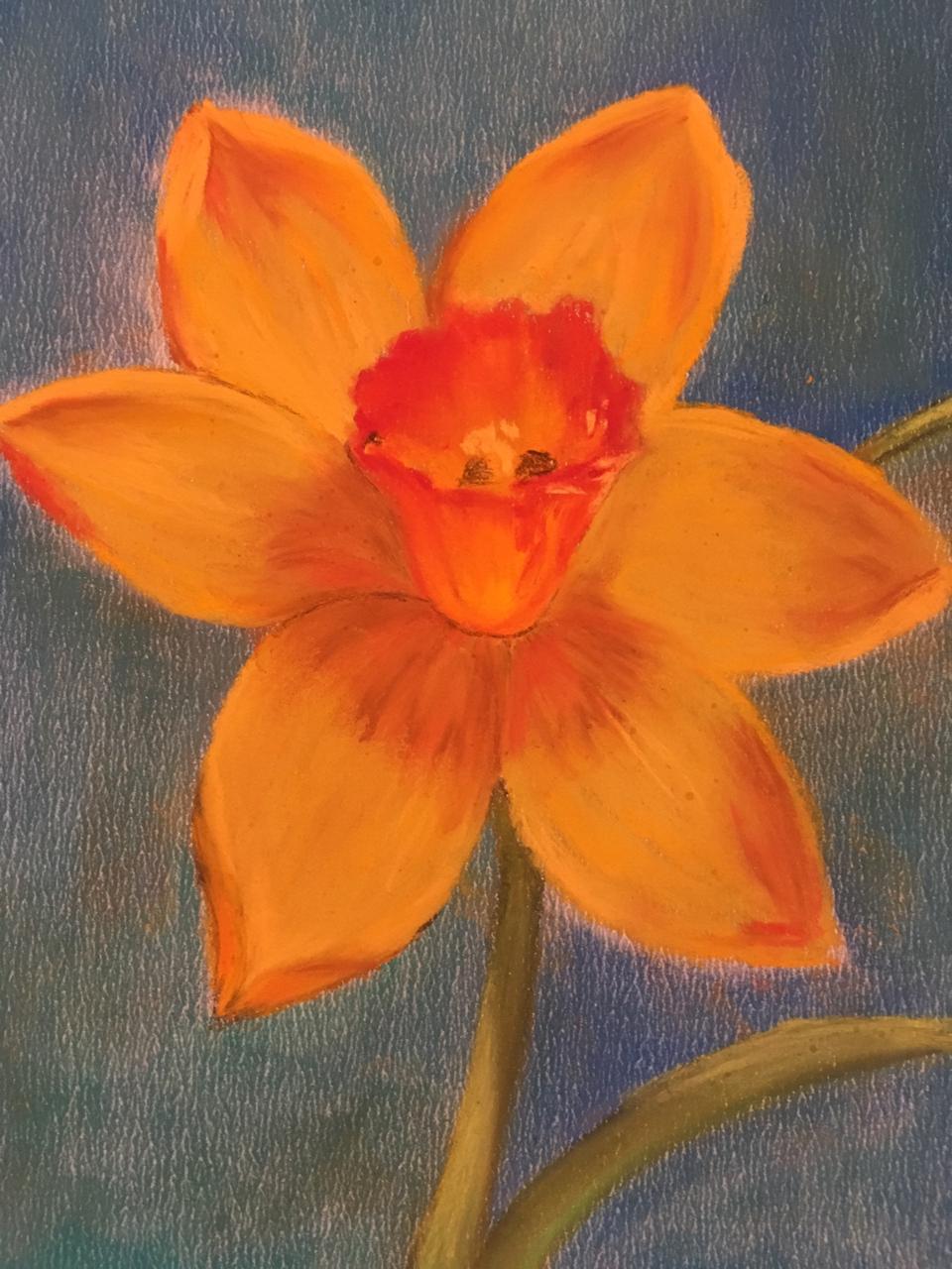 Весенние цветы. Мастер-класс пастелью.