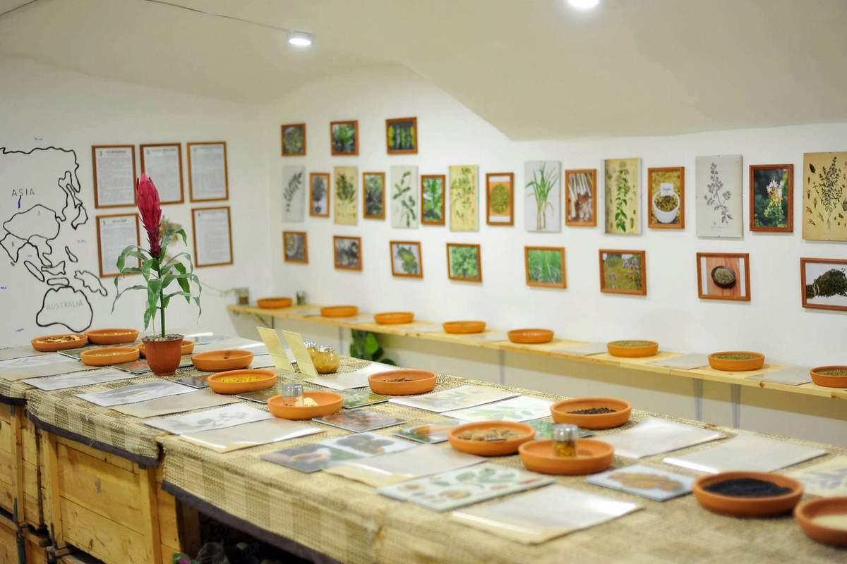 Мамаход в Музей специй + мастер-класс по варке глинтвейна
